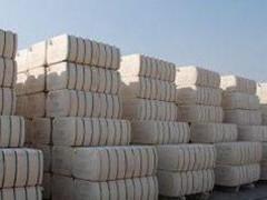 巴基斯坦花纱保持强势 棉纱出口报价稳定